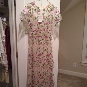 Lularoe Deanne II Pink Flower Shear Overlay Dress